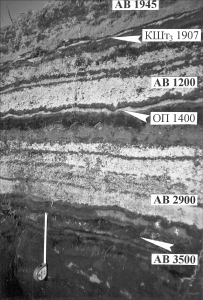 Detail of a section of soil & pyroclastic layers, 25 km to the SE from the crater of Avachinsky. Volcanic tephras from: АВ - Avachinsky (Young cone 1945 & 1200), КШт3 - Ksudach (Shtyubelya cone 1907), ОП - Opala volcano (w/ 'years ago' for prehistoric events). (Photo 2000; from: Bazanova et al., 2001)